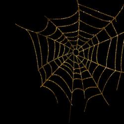 NatashaNaStDesigns_CoffeeHouse_spiderweb1.th.png