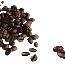 RR_CoffeeShop_AddOn_Element-9.th.png