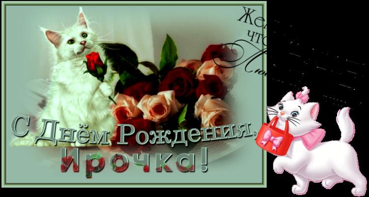 Y-PRAZDNIK-DROZD-IN-2.png