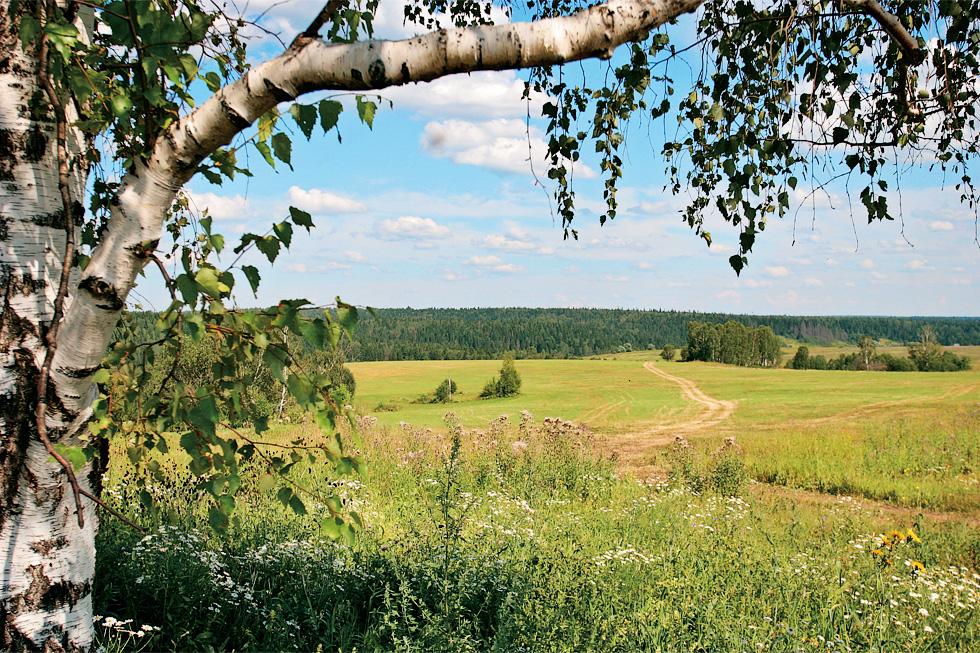lesnaya_polyana_photoalbom_new2012_300-2.jpg